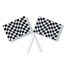 BLACK & WHITE CHECKERED FLAG Thumbnail
