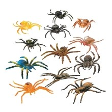 12 CT SPIDERS Thumbnail