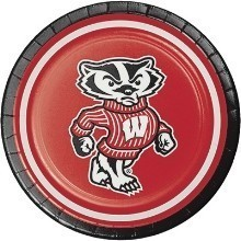 WISCONSIN BADGERS 7