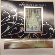 CHRISTMAS WINDOW BOXED CARDS Thumbnail